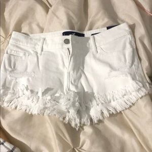 Brand new hollisted shorts